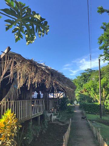 Tapir Loge – Weg zum Steg