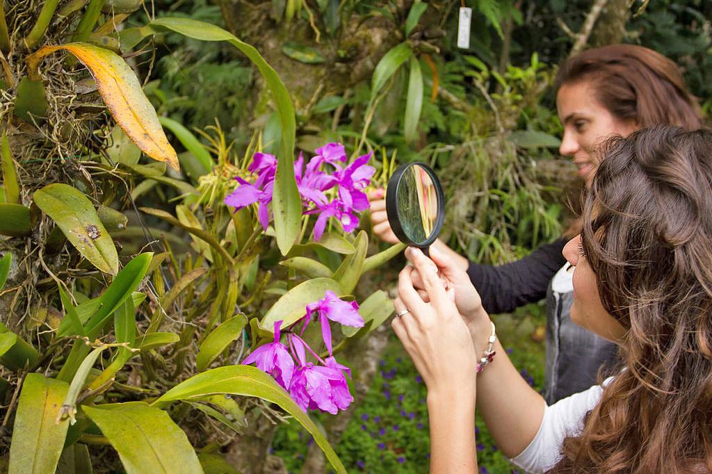 Orchideen Garten – Monteverde (1)