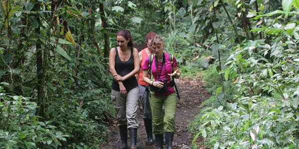 costa-rica-micha-siegfried-hiking-caminata-4