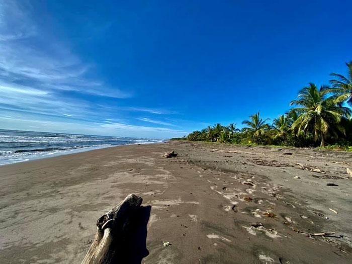 costa-rica-micha-siegfried-picture-beach-tortuguero