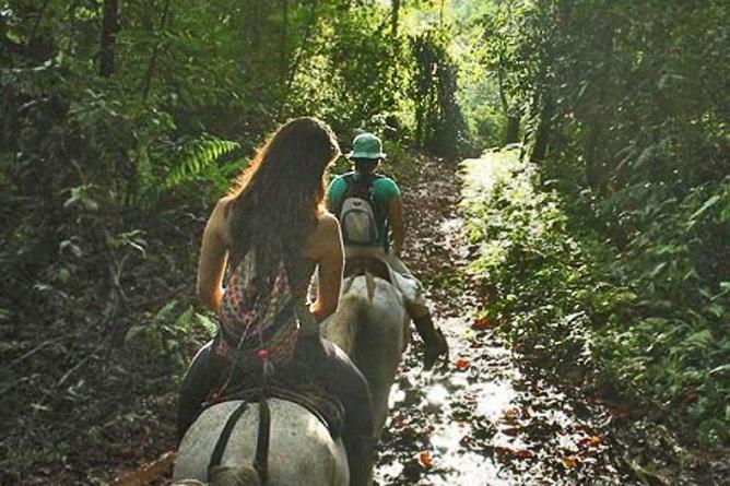 pacheco-reiten-costa-rica-pura-vida-travel